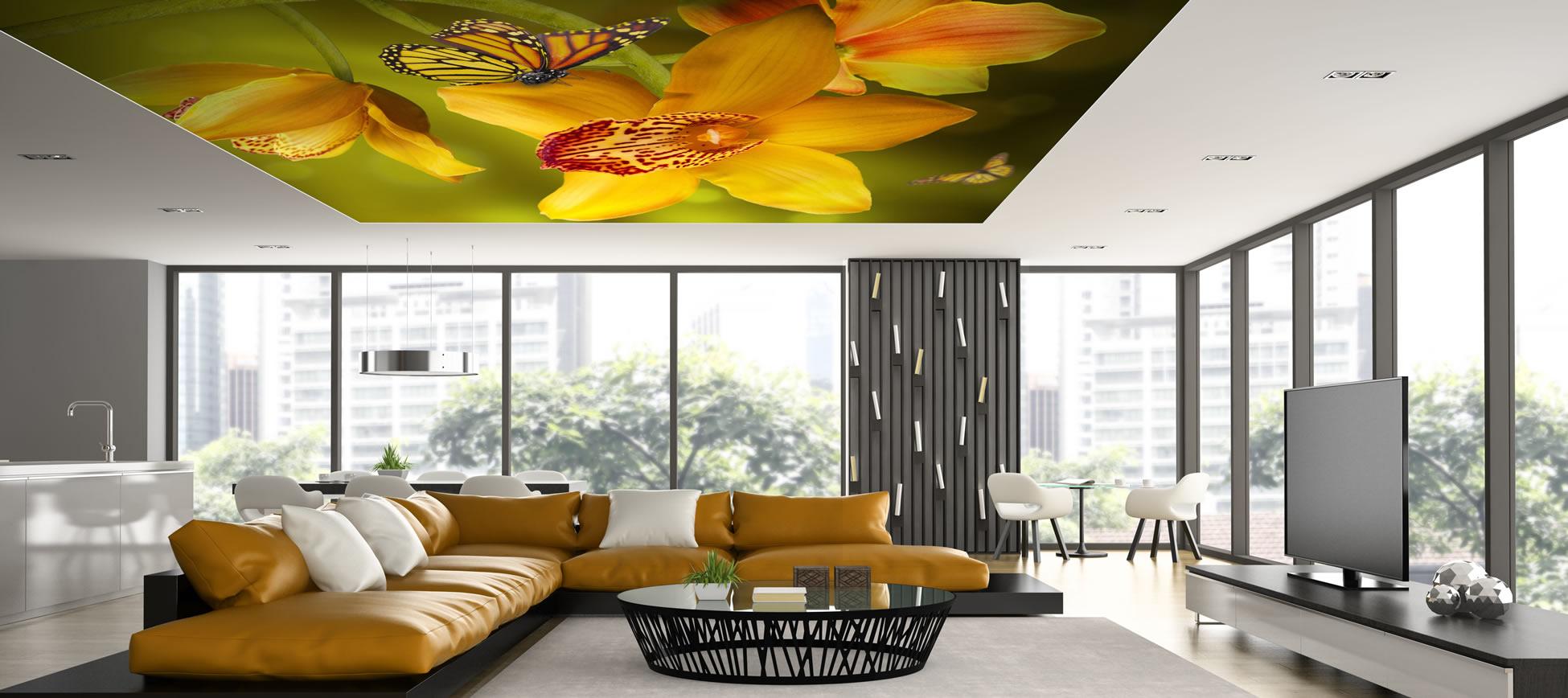 Related pictures gergi tavan barrisol barisol modelleri pictures to - Dijital Bask Gergi Tavan Sistemleri
