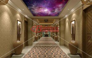 HD Gergi Tavan otel koridorlarında