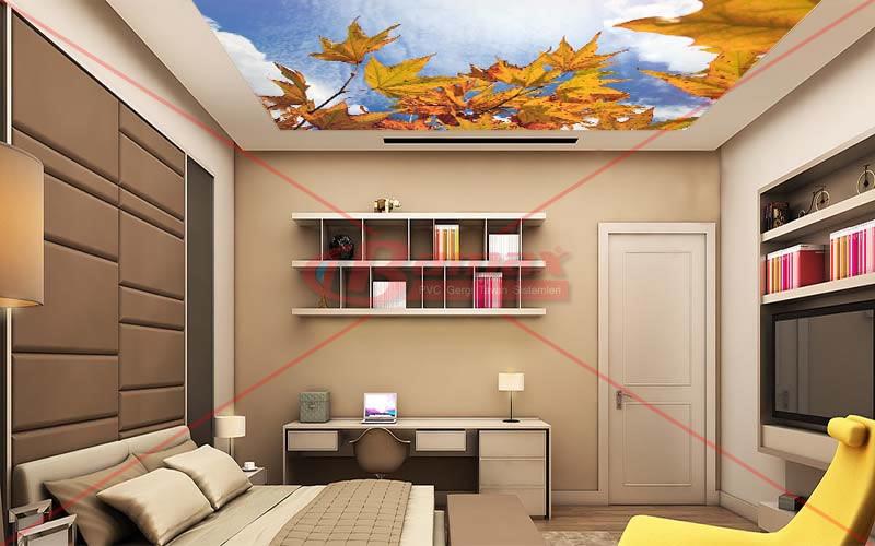 Yaprak baskılı HD Gergi Tavan, Maltepe Gergi tavan, Maltepede gergi tavan