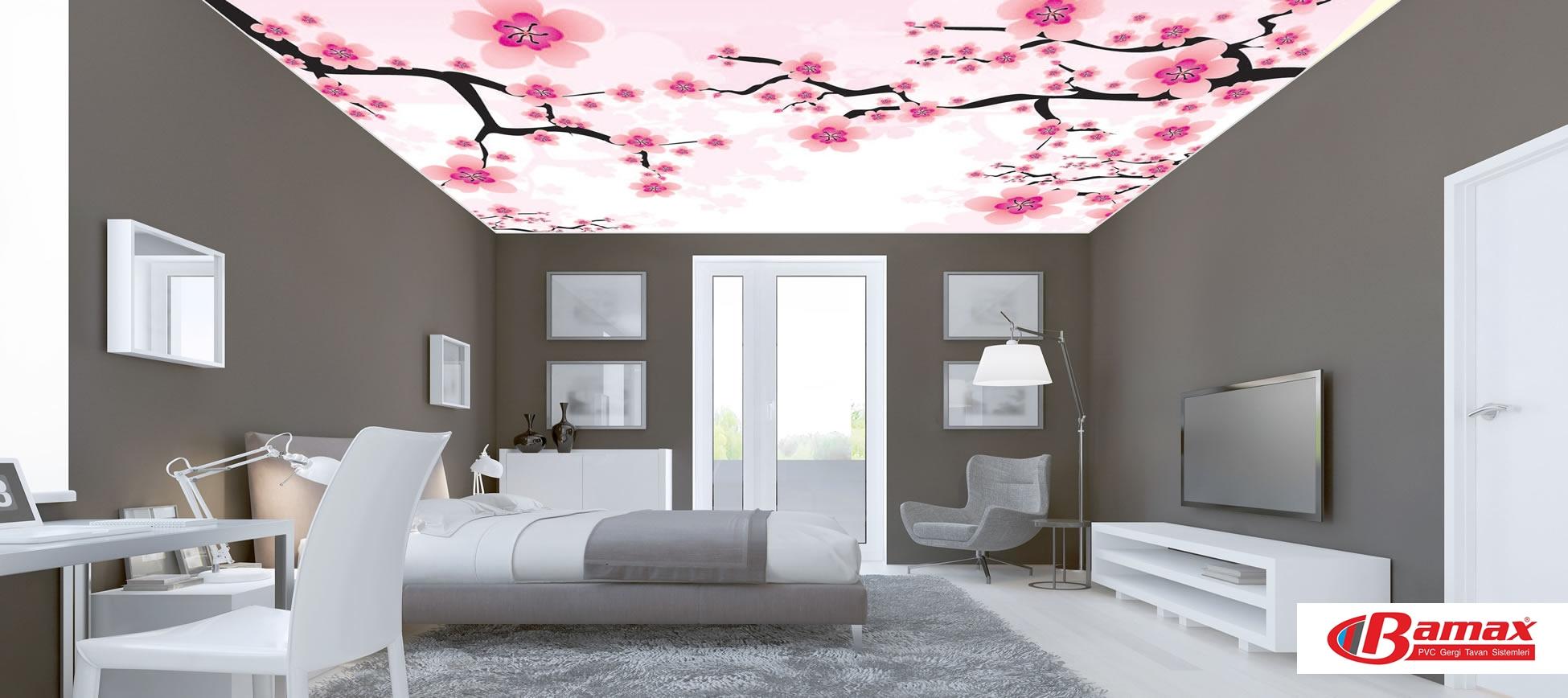 Dijital baskı gergi tavan, Gergi Tavan, ev tavan dekorasyonu