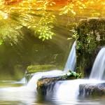 Sonbaharda-selalesi-Manzarasi-gergi-tavan-gorseli