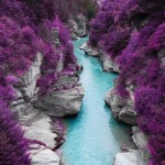 mor-orman-ve-mavi-nehir-gergi-tavan-gorseli