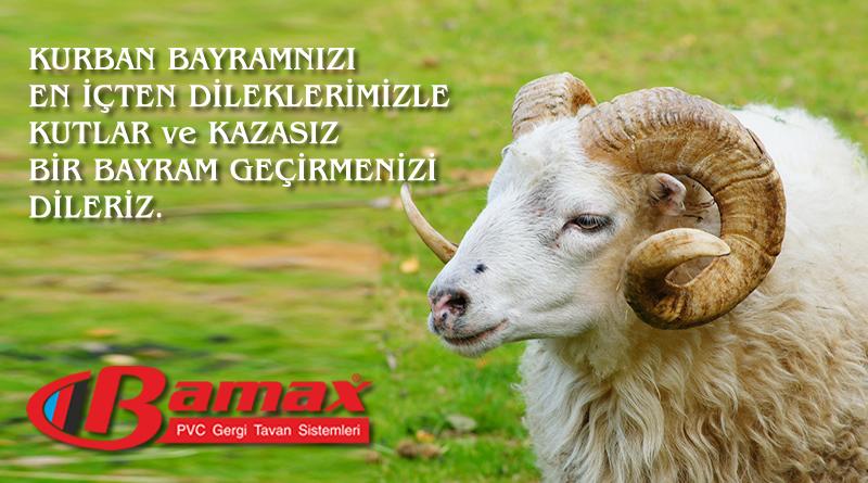 bamax-1