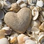 Deniz kabukları ve kalp şeklinde çakıl taşı gergi tavan baskı görseli