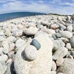 Deniz kenarında çakıl taşları gergi tavan baskı görseli