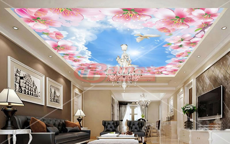 Digital printing stretch ceiling systems